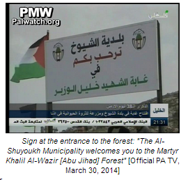 PMW forest