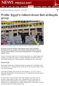 Profile Ansar Bayt al Maqdis