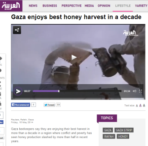 Bees Gaza Al Arabiya