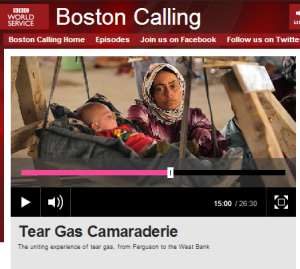Boston Calling WS