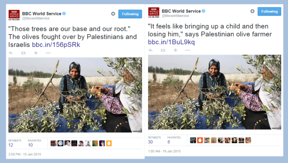 BBC ME editor's olive propaganda recycled for World Service listeners