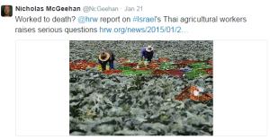 HRW tweet 2