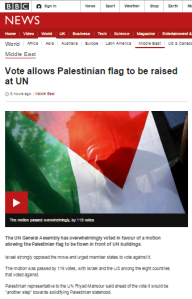 UN flags written