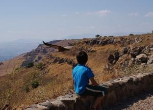 Gamla nature reserve