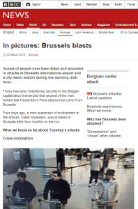 Brussels In Pictures