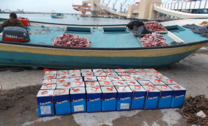 Fishing boat smuggling liquid fibreglass apprehended in January 2015