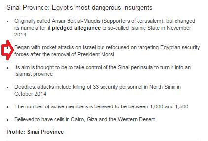 Wilayat Sinai art insert