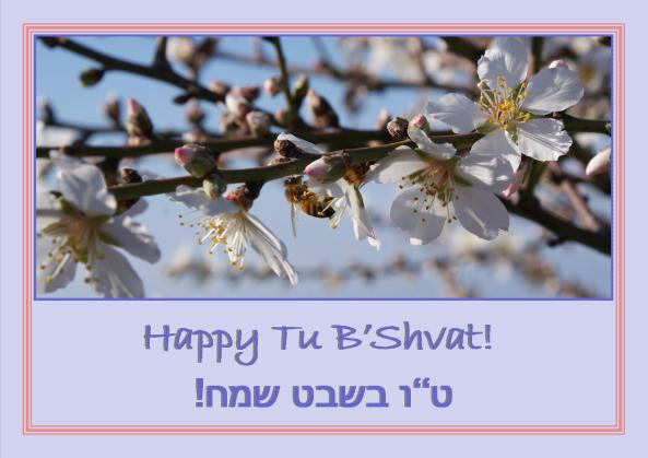 Happy Tu B'Shvat!